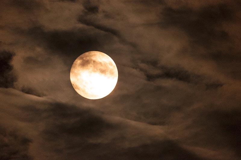 5-cgluc lune 1