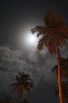 5mc clair de lune 1